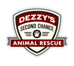 Dezzys-Second-Chance-logo